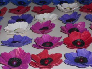 http://fleursdepeaux.cowblog.fr/images/DSCN1974.jpg