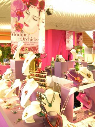 http://fleursdepeaux.cowblog.fr/images/orchidees034.jpg